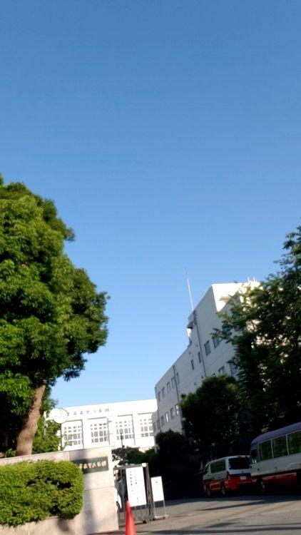 値 駒澤 大学 偏差