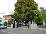 川越高等学校