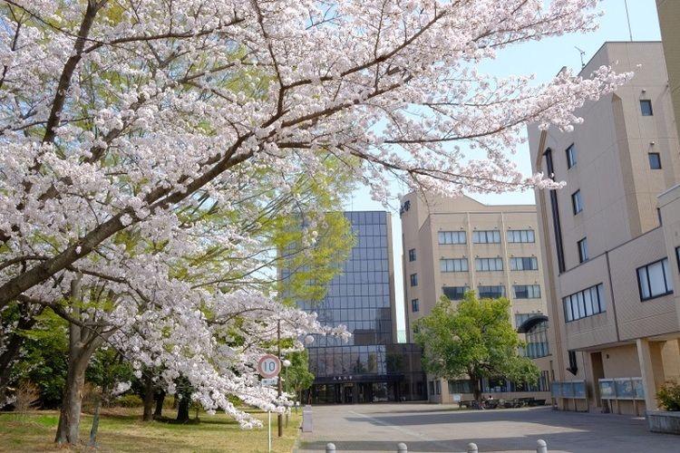 上 武 大学 Jobu University-上武大学