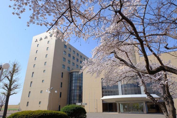 上 武 大学 日本上武大学(Jobu University)-百利天下留学