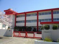 日本保健医療大学