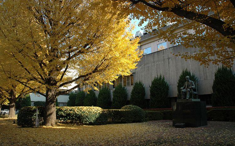 東京工業大学画像