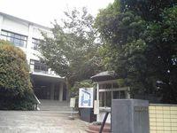 多摩美術大学