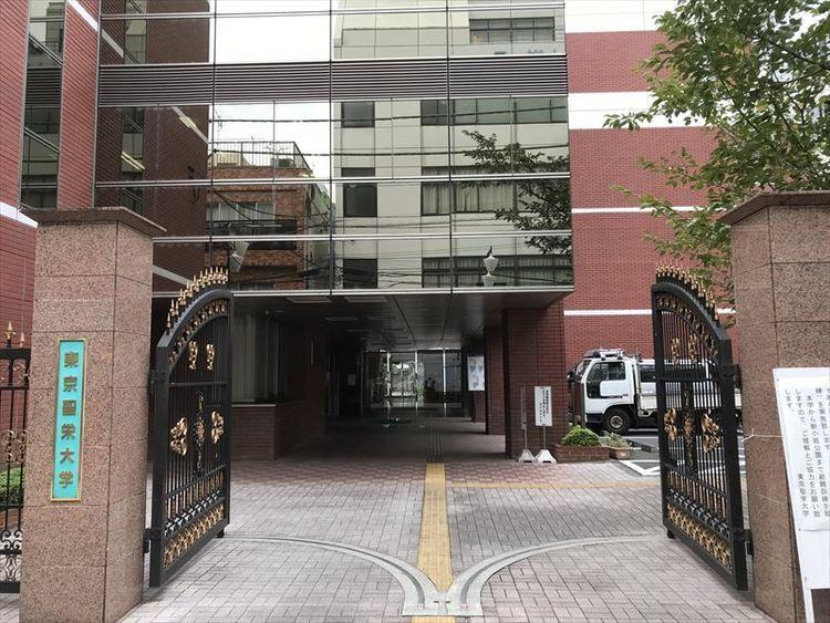 東京聖栄大学画像
