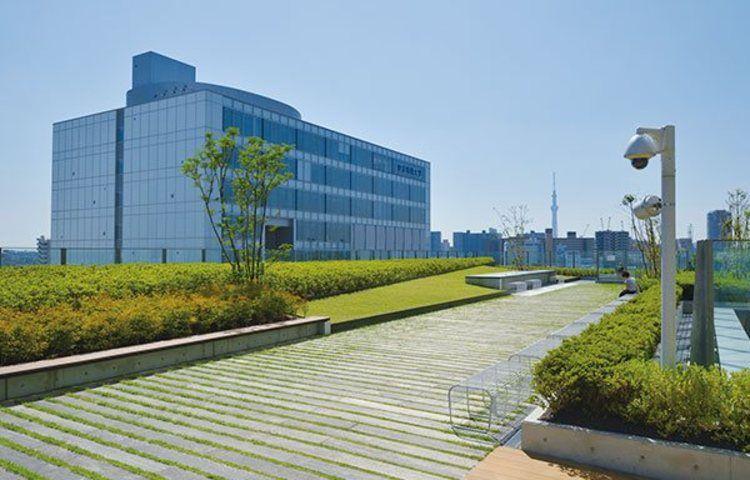 東京 電機 大学 偏差 値 東京電機大学の偏差値ランキング 2021~2022