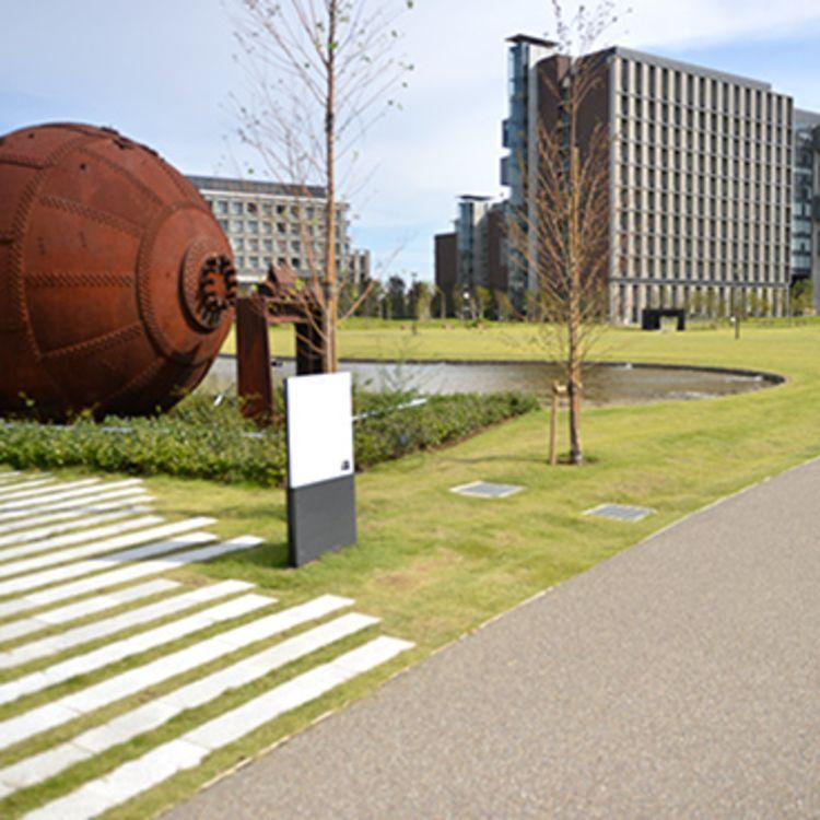 東京理科大学画像