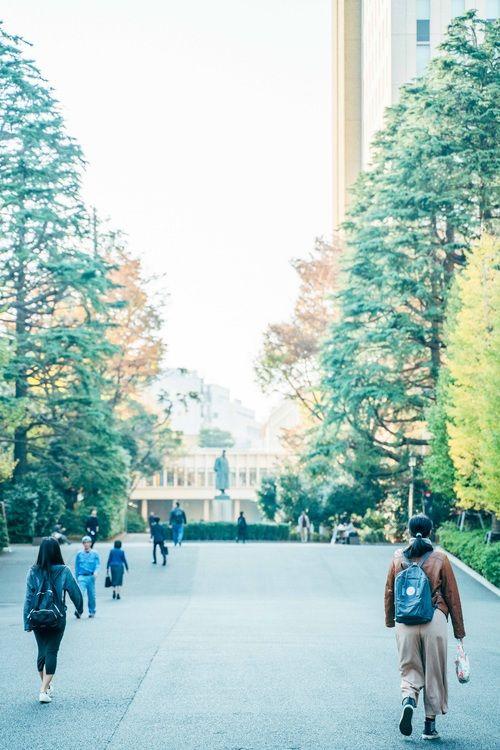 早稲田大学画像
