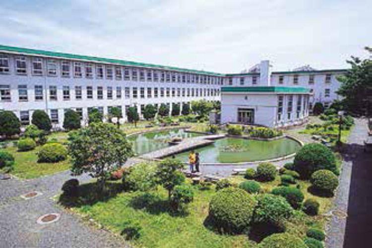 横浜市立大学画像