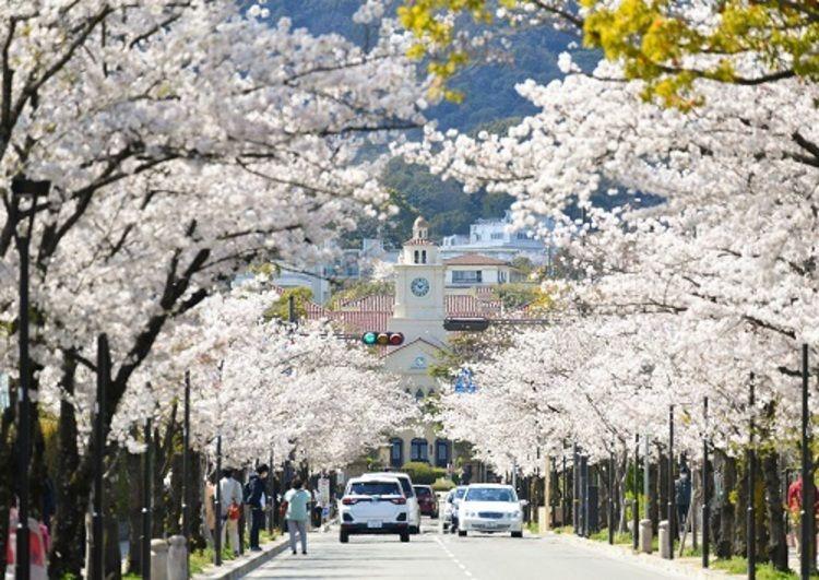 関西学院大学画像