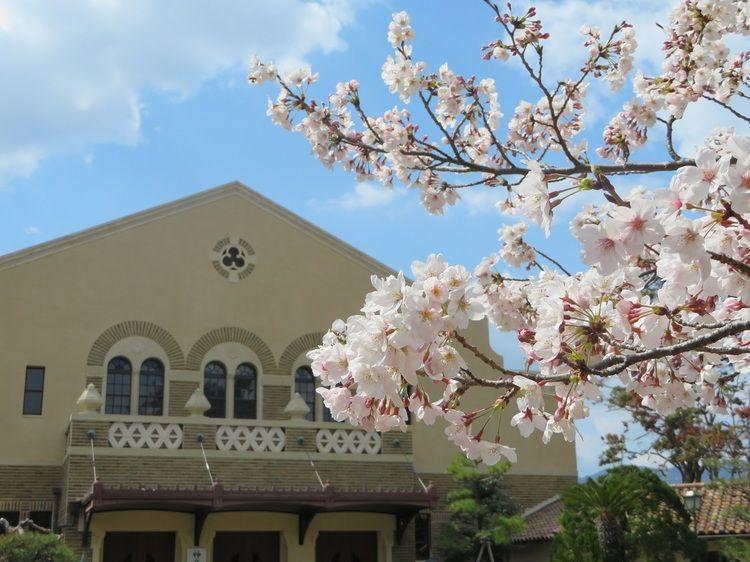 神戸女学院大学画像