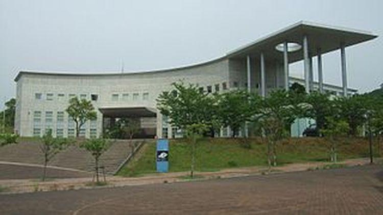 赤十字 大学 日本 看護 大学院