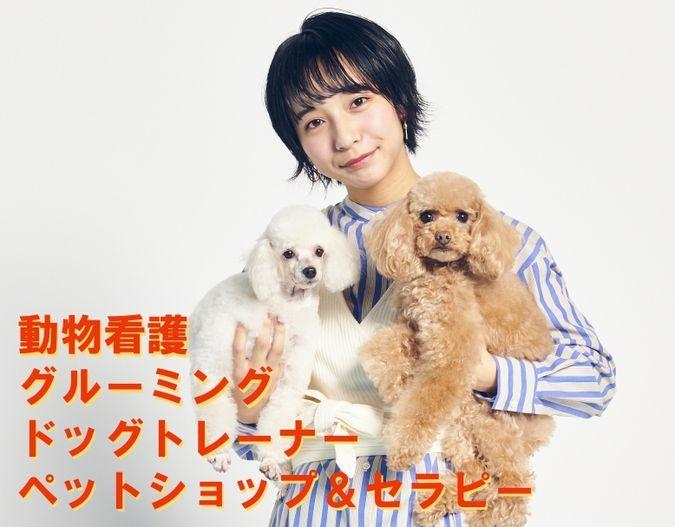 専門学校日本動物21
