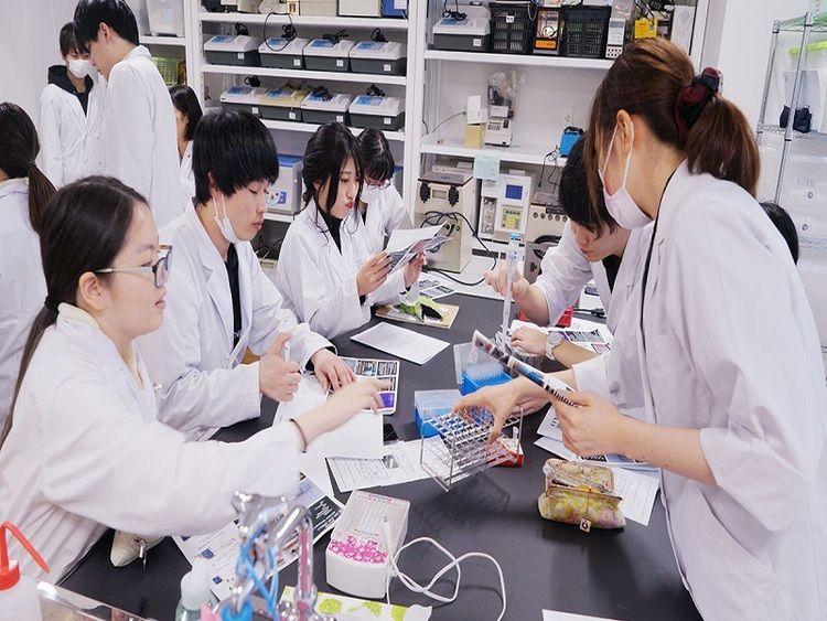 東京電子専門学校画像