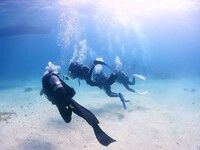 ダイビング体験