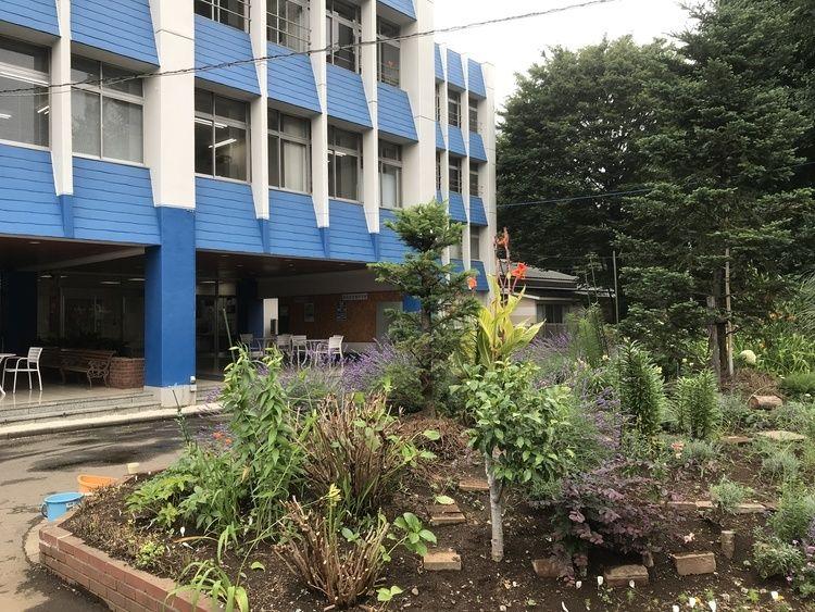 草苑保育専門学校画像