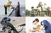 ペット・動物・海洋・環境業界で『好き』を『仕事』にするための体験入学