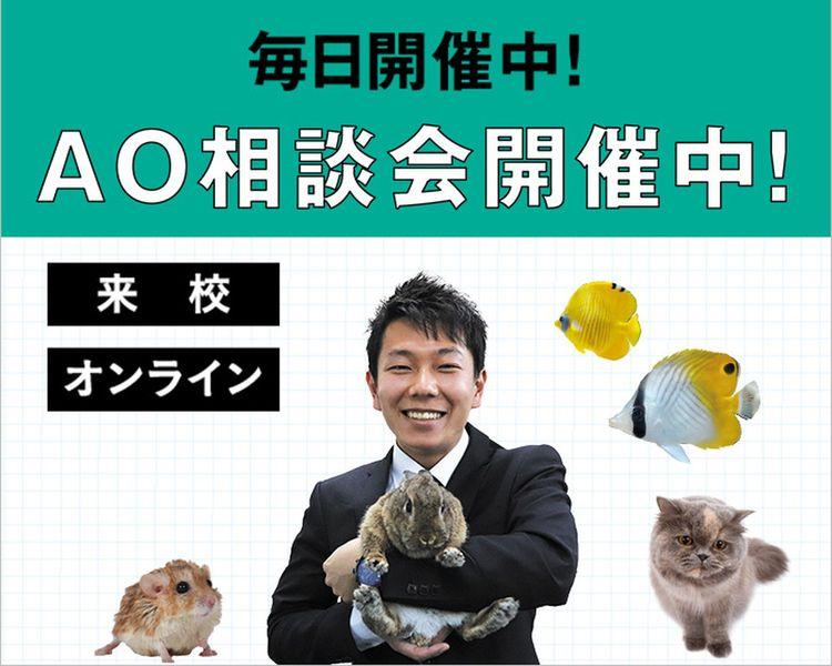 【来校型】AO相談会開催中!