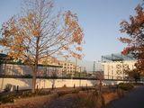 椙山女学園高等学校