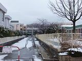 秋田大学教育文化学部附属小学校