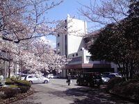 千葉高等学校