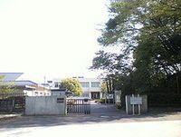 リリー ベール 小学校
