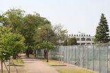 筑波大学附属坂戸高等学校