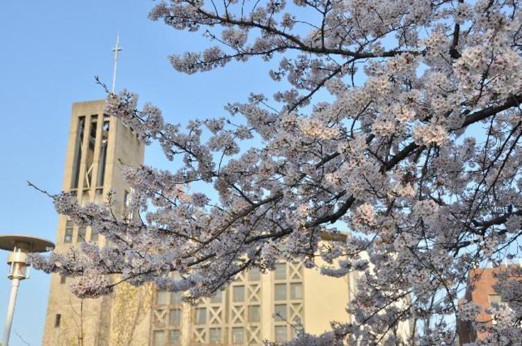 名古屋高等学校画像