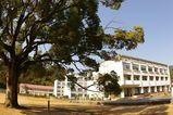 柏原高等学校