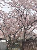 三木東高等学校