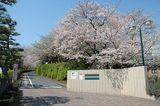 浜松西高等学校