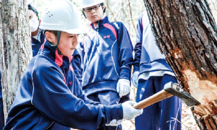 2018林業体験  (637)