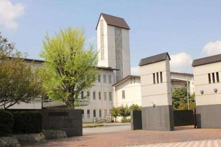 公立 小松 大学 偏差 値 公立小松大学の偏差値 【2021年度最新版】
